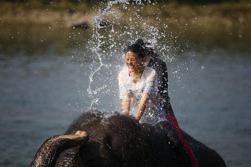 جشنواره فیل ها در نپال