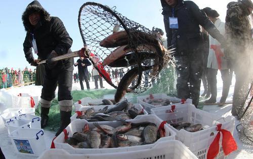 بازار ماهی – چین
