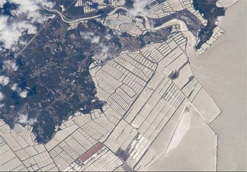 پرورشگاههای ماهی در چین