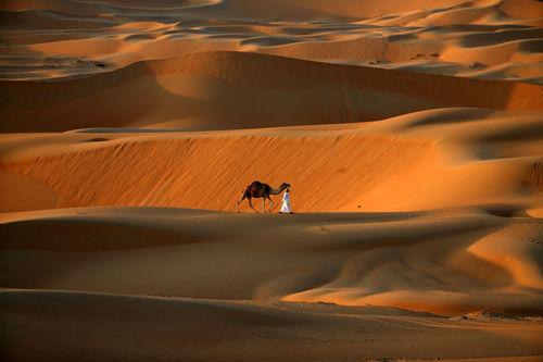 صحرای ابوظبی - امارات