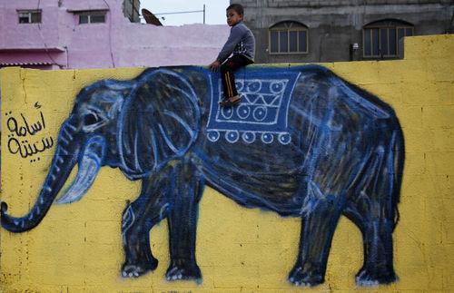 پسر فلسطینی سوار بر فیل نقاشی شده روی دیوار در نوار غزه