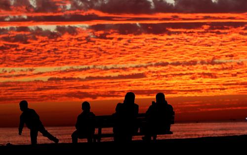 ساحل غزه
