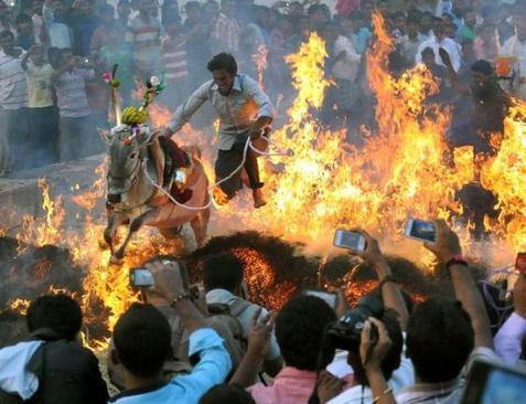 عبور از آتش در جریان یک جشنواره آیینی در میسور هند