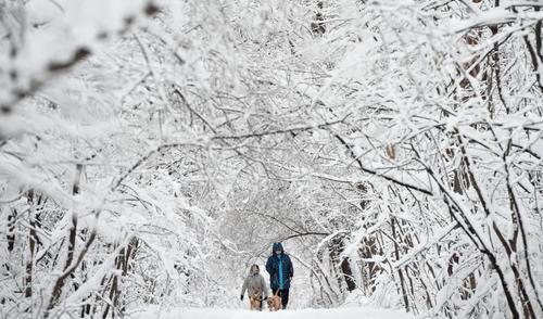 بارش برف در شهر صوفیه بلغارستان