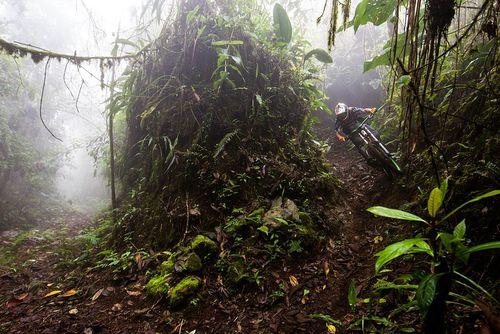 دوچرخه سواری در جنگل های اکوادور