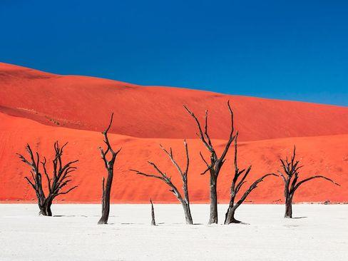 جزیره سکوت و گرما- نامیبیا