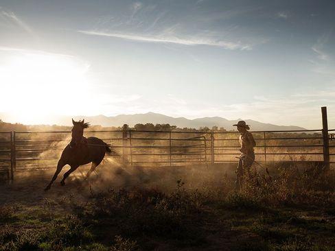 مزرعه ای در ایلالت یوتا آمریکا
