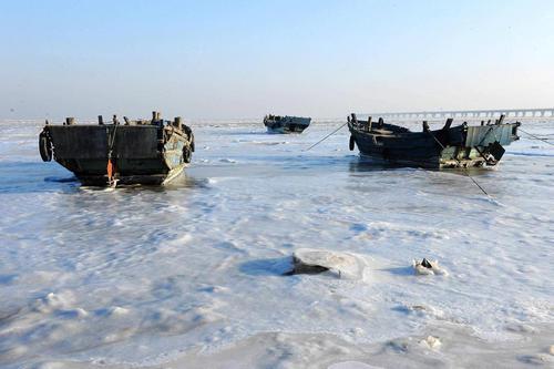 چسبیدن قایق های ماهیگیری به سطح یخزده ساحل جیائوژو در شهر گینگدائو چین