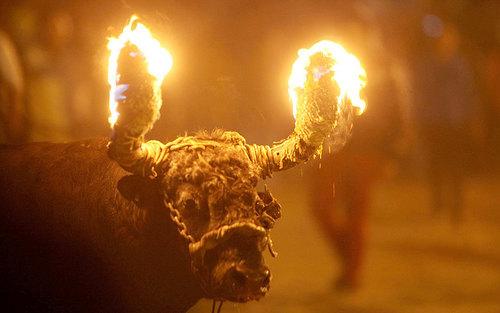 آتش زدن شاخ های گاو در جریان جشنواره ای در اکوادور
