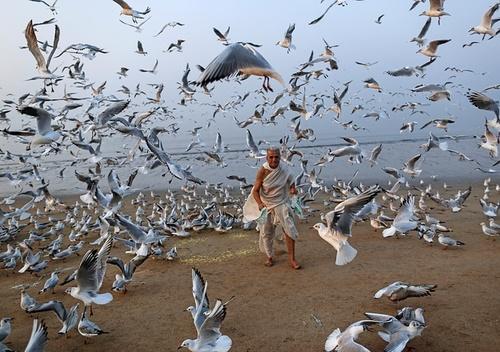 ساحل بمبئی