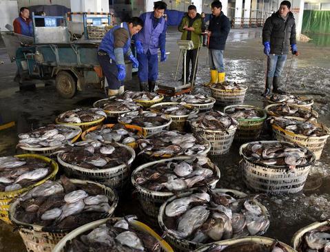 بازار ماهی فروشان در شهر ژوشان چین