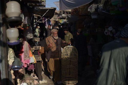 بازار پرنده فروشان در کابل افغانستان