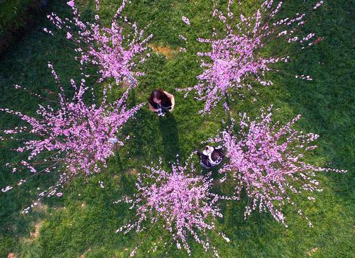 بازدید توریست ها از پارکی در شهر ژانگجیاجی مرکز استان هونان چین