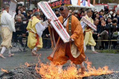 یک راهب بودایی در حال عبور از ذغال گداخته در معبدی در ژاپن در قالب آیین های بهاره