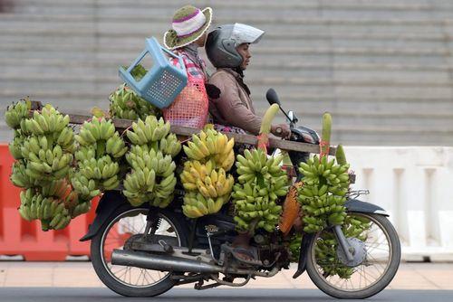 بار زدن محموله موز با موتور – شهر پنوم پن مرکز کامبوج