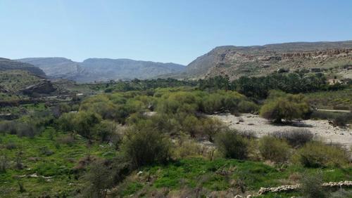 اسفند 94- روستای شکرک- شهرستان دشتستان- استان بوشهر- علی قره بیگی