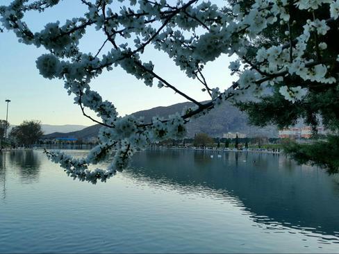 اسفند 94- دریاچه کیو- خرم آیاد- میثم استوشی