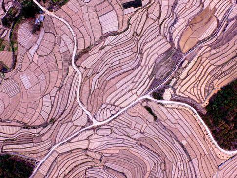 تصویری هوایی از زمین های کشت هندوانه در چین