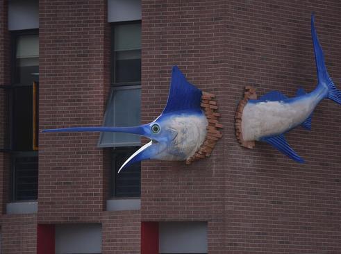 مجسمه اره ماهی در شهر چونگینگ چین