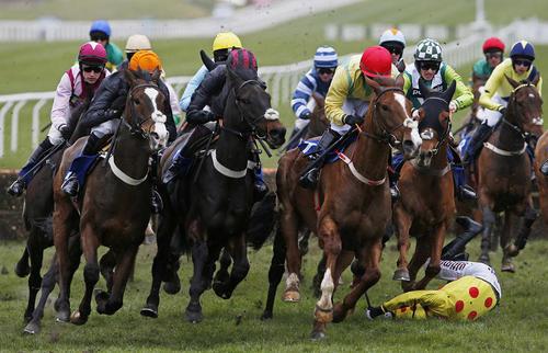 افتادن از اسب در جریان مسابقات اسب سواری – انگلیس