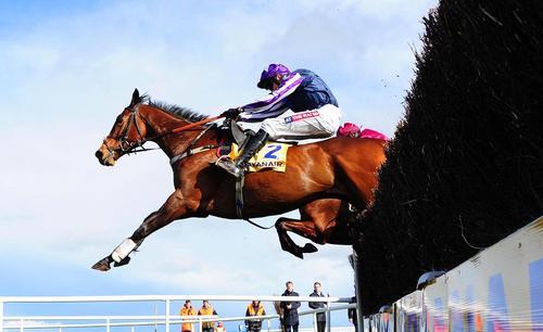 مسابقات اسب سواری در ایرلند