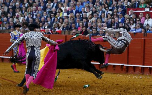 گاو بازی در سویل اسپانیا