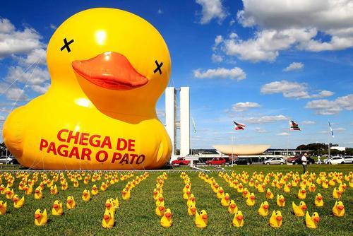 چیدن دهها اردک در محوطه مقابل کنگره ملی برزیل در شهر برزیلیا از سوی فدراسیون صنایع سائوپائولو با درخواست 400 عضو این فدراسیون برای محاکمه علنی دیلما روسف رییس جمهور برزیل