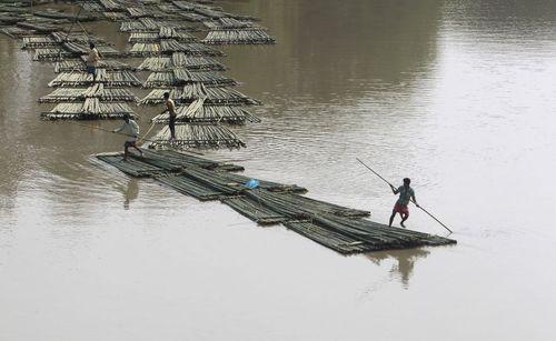 حمل چوب های بامبو روی رودخانه ای در هند