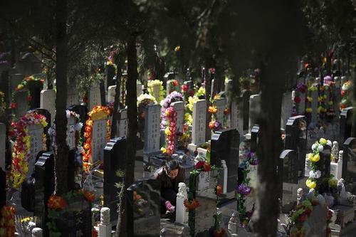 روز سر زدن به مقابر درگذشتگان در چین – قبرستانی در پکن