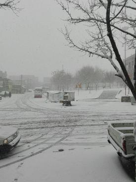 بارش برف در تبریز- بهزاد وجودی
