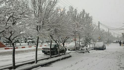 بارش برف در تبریز- امیر قابل نژاد