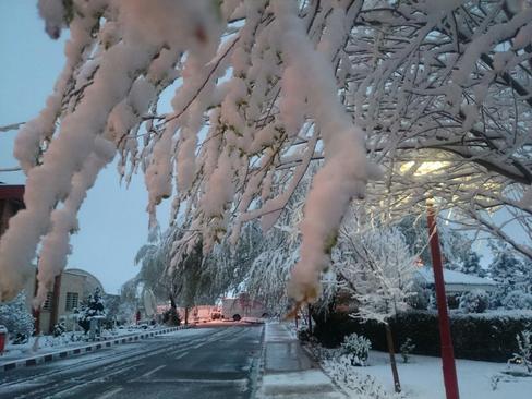بارش برف در ارومیه- کیوان مظفری