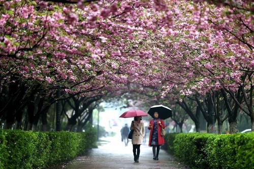 دانشگاه شهر شیان چین