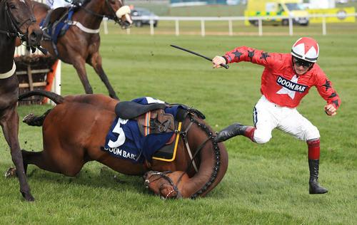 مسابقات اسب سواری در لیورپول انگلیس