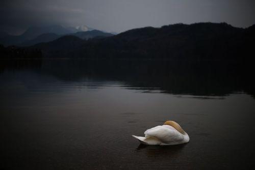 دریاچه وِیسِنسی در جنوب آلمان