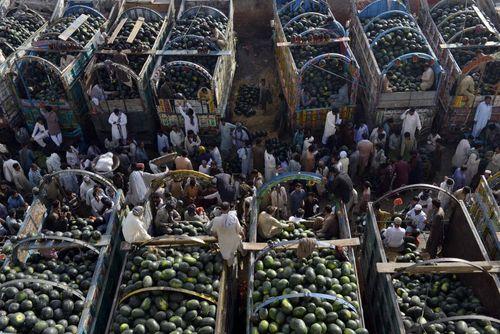 بازار میوه در شهر لاهور پاکستان