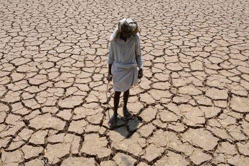 یک کشاورز در زمین زراعی خشک شده خود در حیدر آباد هند ایستاده است