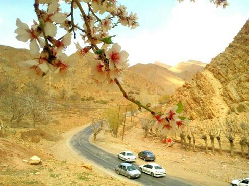 بهار طبیعت- شهمیرزاد-استان سمنان- محسن صفا