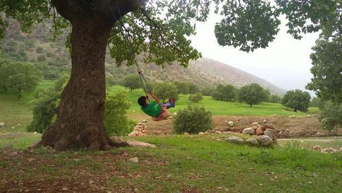 طبیعت یاسوج- استان  کهگیلویه و بویراحمد- آلن
