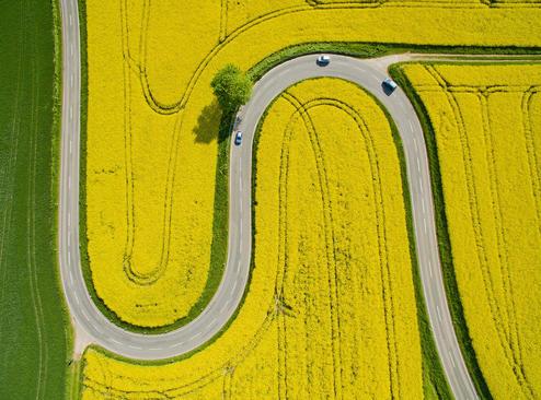 جاده ای در آلمان