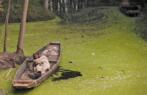 خوابیدن درون قایق کوچک – کشمیر