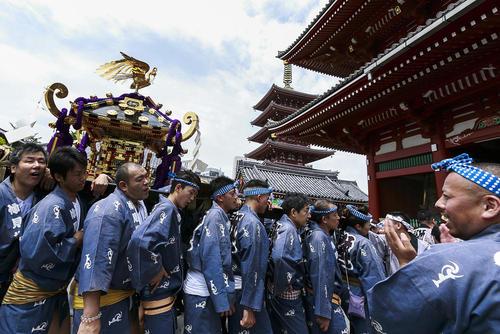 بلند کردن زیارتگاه های قابل حمل در جریان جشنواره سنتی سانجا در مقابل معبدی در توکیو