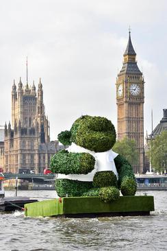 نمایش سازه ای 6 متری از بیش از 110 هزار برگ چای سبز در رود تیمز لندن