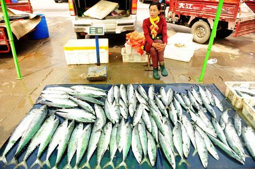 بازار ساحلی ماهی در شهر کیندائو چین