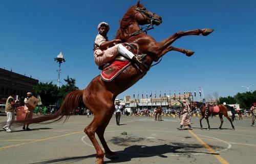 جشنواره اسب سواری به مناسب یکپارچگی وحدت یمن