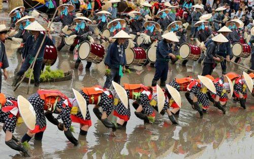 مراسم سنتی کاشت برنج - ژاپن