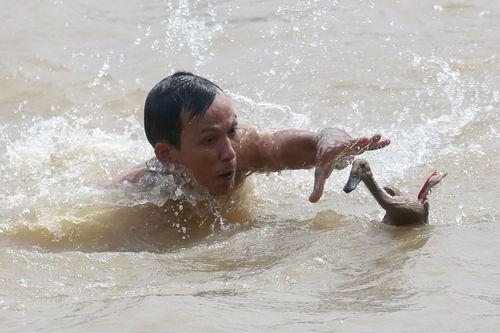 مسابقه گرفتن اردک از رودخانه – جاوه اندونزی