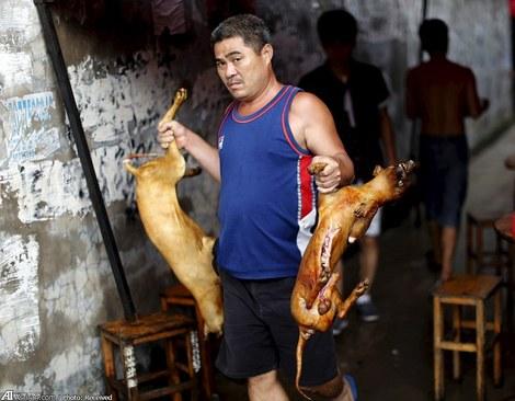 طبخ غذا با گوشت سگ در جشنواره یولین - ژوئن 2015