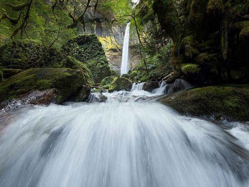 آبشاری در اورگان آمریکا