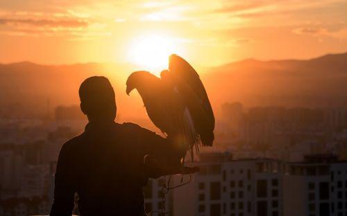 یک گردشگر در حال گرفتن عکس با عقاب – اولان باتور مغولستان
